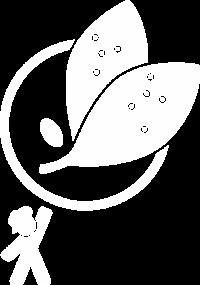 BarbRE logo white no text